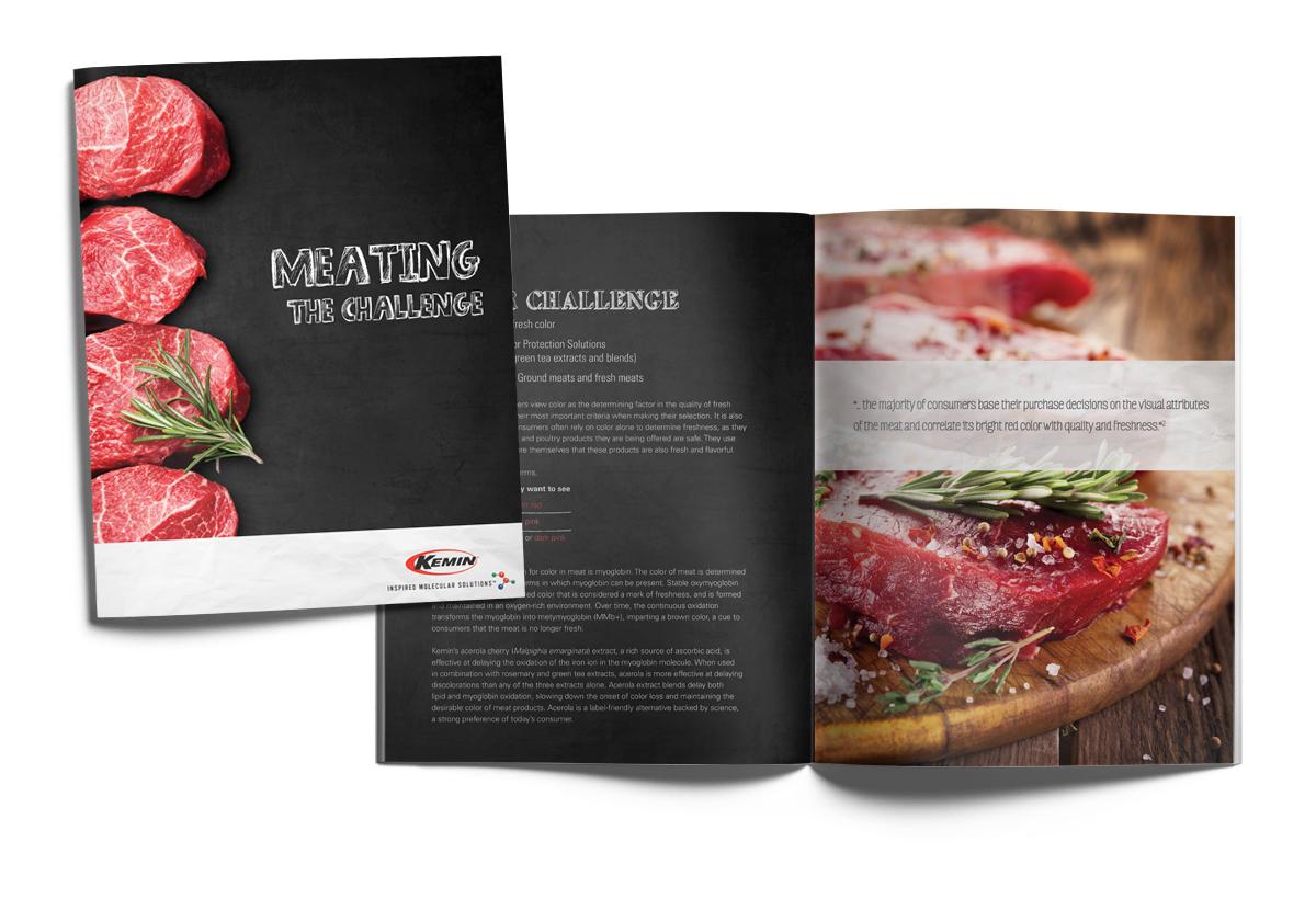 Kemin Meat Brochure